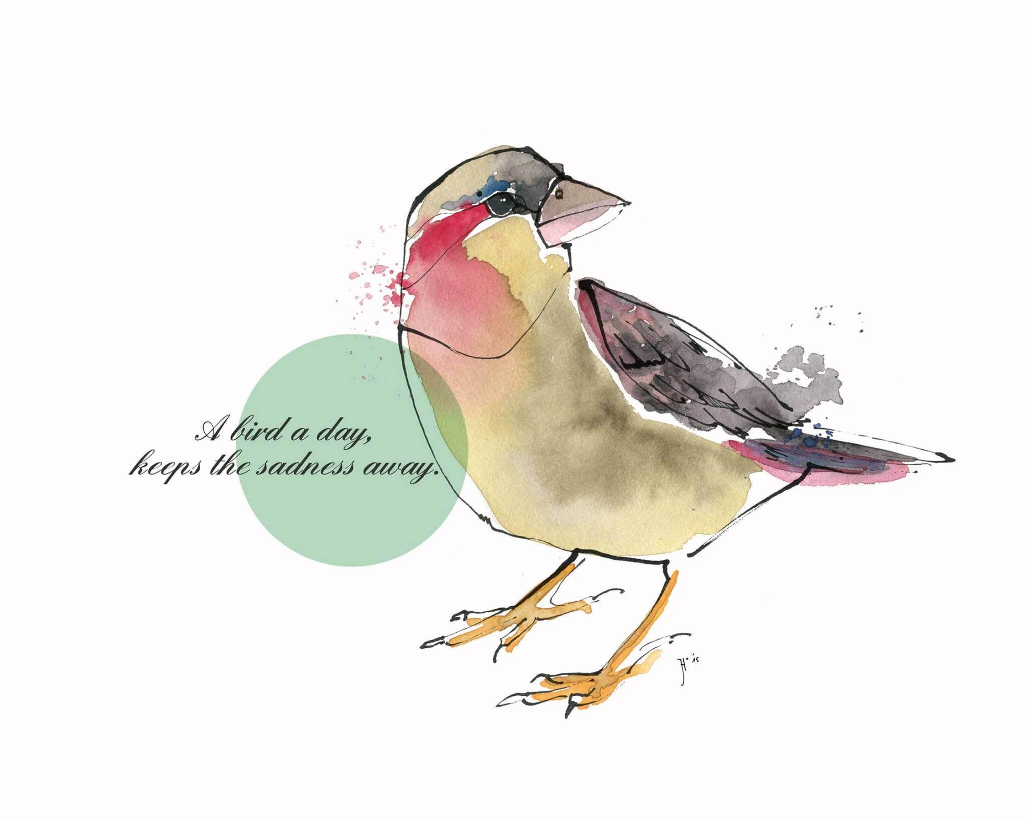 Vogelfreundschaft // Stadtelster und Goldfasan – Schmuck und Illustration