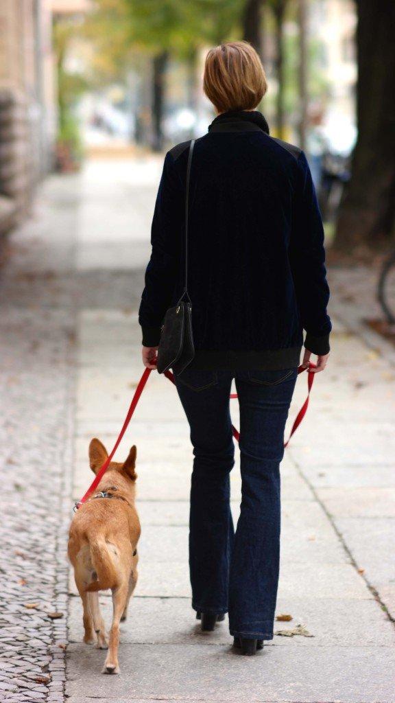 Outfit mit Schlaghose und Hund