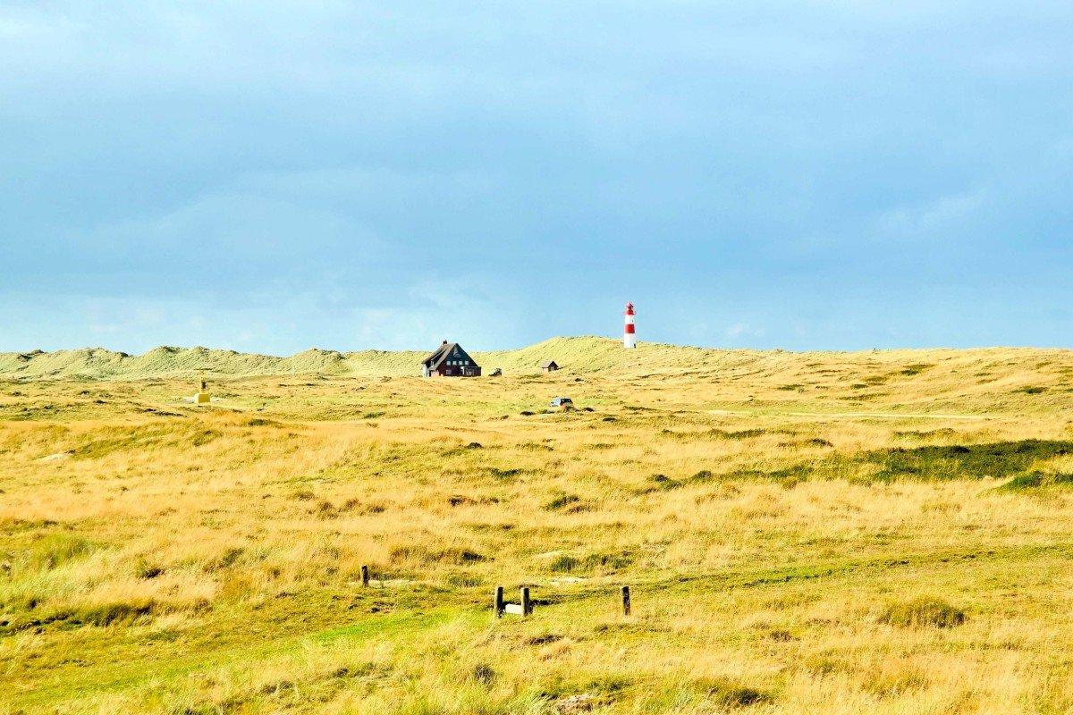 Landschaft mit Leuchtturm auf Sylt