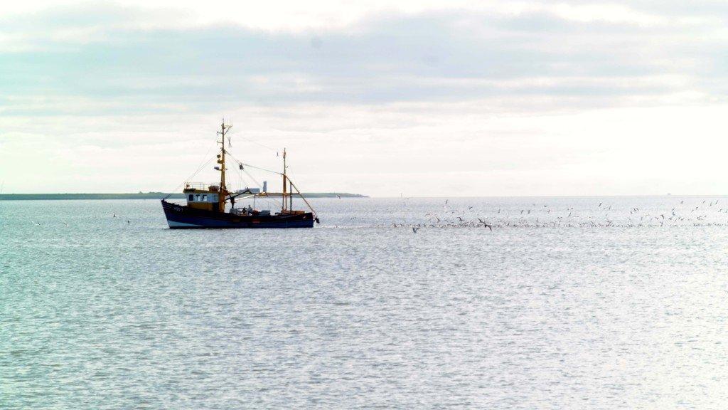 Fischerboot auf Hallig Hooge