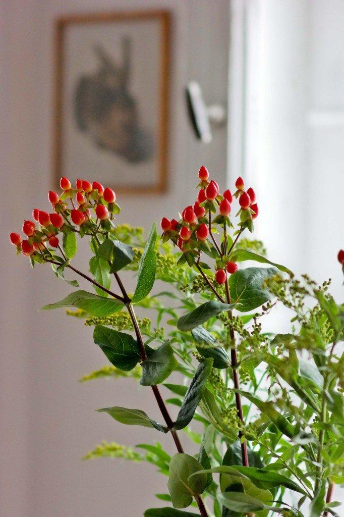 Detailfoto Blume und Bild