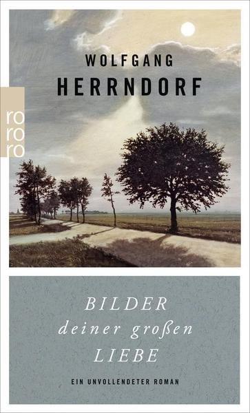 """Buchcover """"Bilder deiner großen Liebe"""" von Wolfgang Herrndorf"""