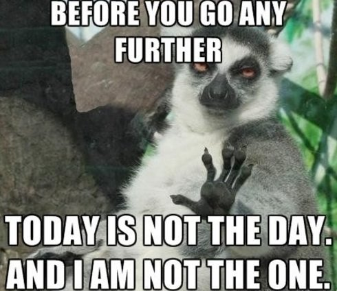 "Meme ""Today is not the day"""