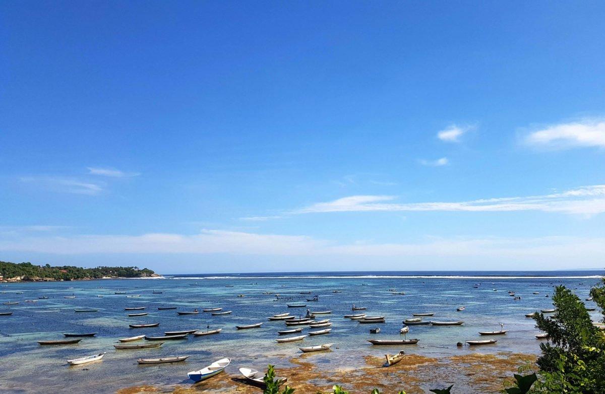 Seaweed-Felder auf Nusa Lembongan