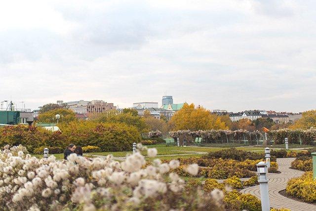 Dachgarten der Bibliothek in Warschau