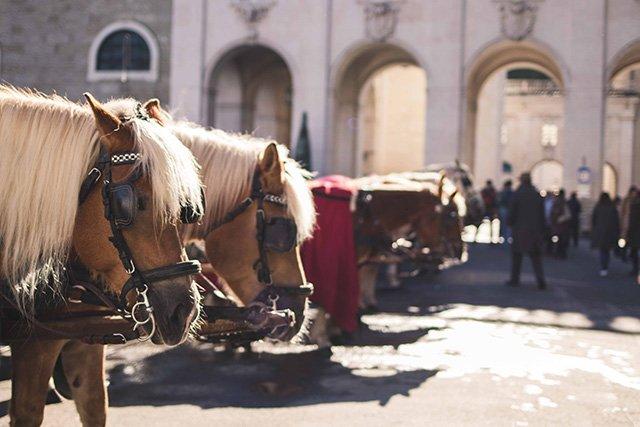 Pferdekutschen in Salzburg