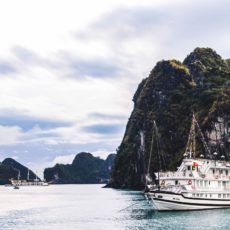 Tour mit Swan Cruises durch die Bay Tu Long Bay