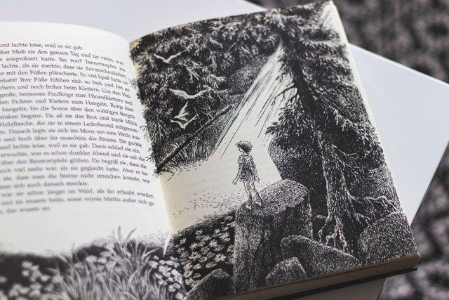 Illustration für Ronja Räubertochter