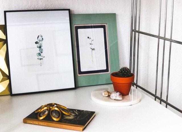 Pflanzen Illustrationen von Clara Schicketanz
